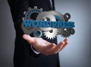 WordPress plugin checker - Verify your security